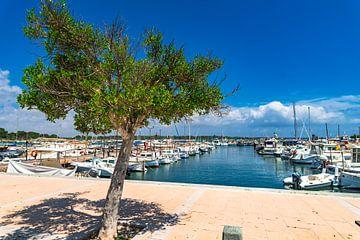 Promenade bij havenhaven van Cala Bona op het eiland Mallorca, Spanje van Alex Winter