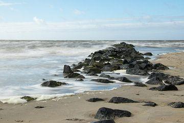 Ruige Zee. van