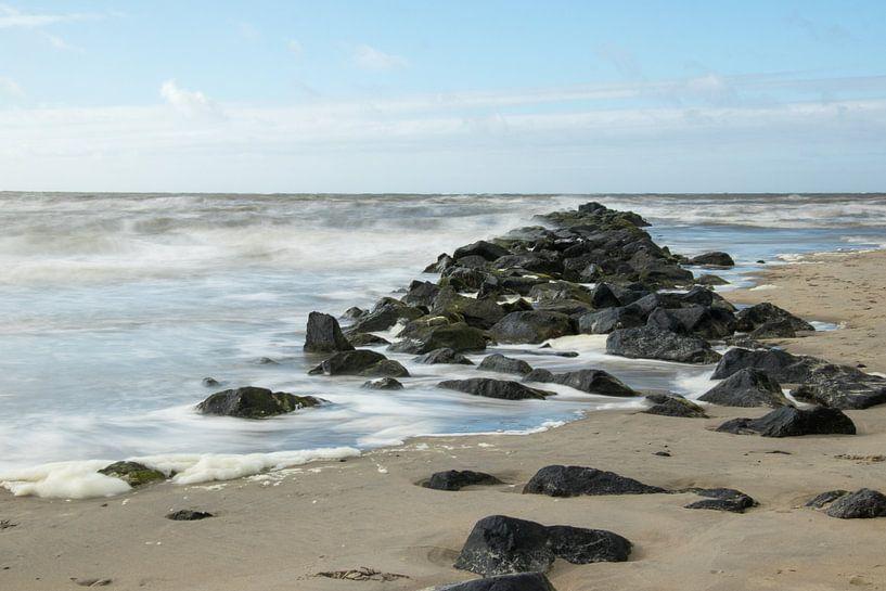Ruige Zee. van Nicole van As