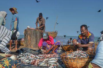 Vissersmarkt in Sri Lanka van Aart Reitsma