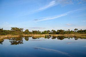 Reflectie in het blauwe water