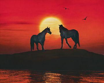 Twee paarden bij de zee van Jan Keteleer