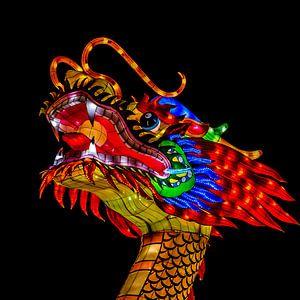Dragons Head van
