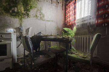 Pflanze auf dem Tisch von Perry Wiertz