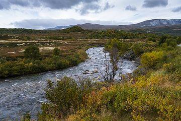 Herfst op Dovrefjell Noorwegen van Joke Beers-Blom