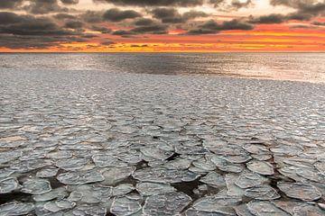 Pfannkuchen-Eis - Antarktis von Eefke Smets