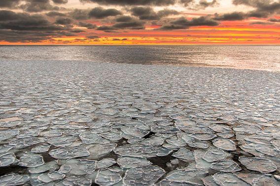Pannekoekenijs - Antarctica van Eefke Smets