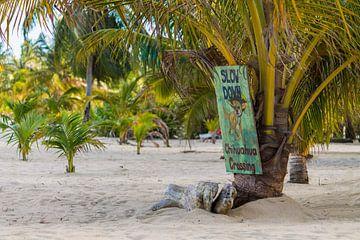 Signe de Chihuahua sur la plage de Belize sur Joost Winkens