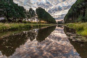 Bomenrij in Beesd met reflectie van de wolken in het water