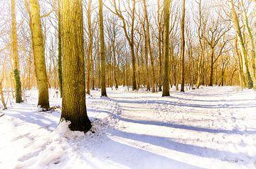 Winter bos van Erik Reijnders