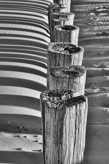 In weer en wind van Jonathan van den Broeke