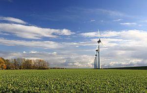 windmolens in het landschap bij Urk