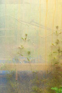Fenêtre Urbex 3 de 3 - jaune