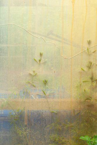 Urbex raam 3 van 3 - geel