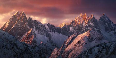 Lofoten Dreams van Daniel Laan