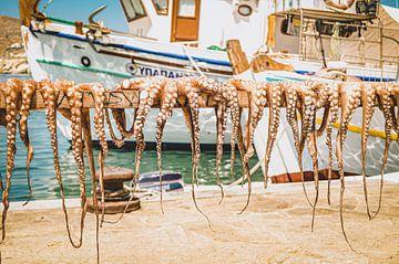 Verse octopus en inktvis in een Griekse haven van Daphne Groeneveld