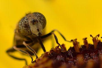 Mug met gestippelde ogen