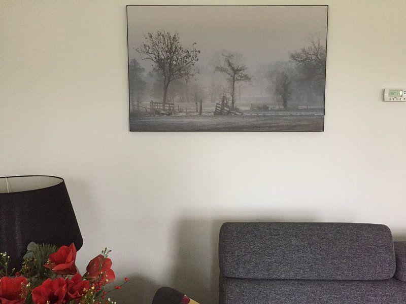 Klantfoto: Fries landschap van Teo Goudriaan, op print op doek
