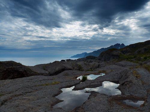 Amazing Lofoten