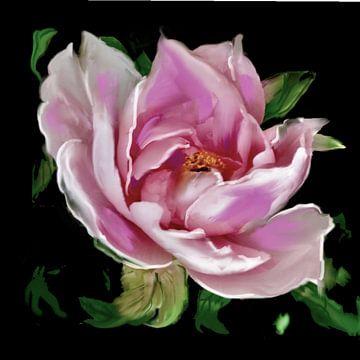 Roos van Raina Versluis