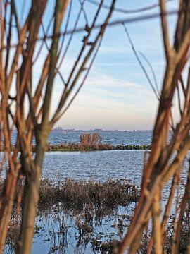 Uitzicht op het Haringvliet bij Stellendam van Rinke Velds