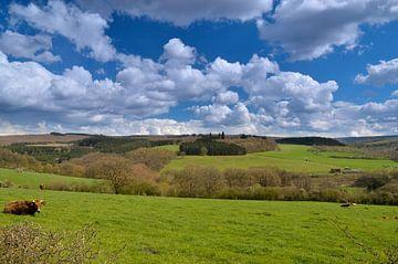Vergezicht met wolken van Ger Nielen