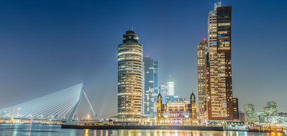 Skyline Rotterdam kop van zuid