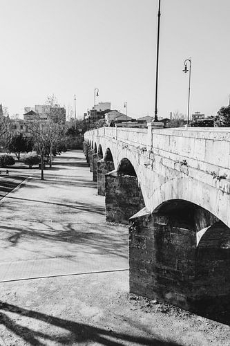De oude brug naar de stad Valencia, Spanje