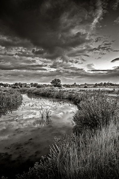 Natuur op de rand van Ruud Peters