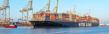 Containerschiff an einem terminal im Rotterdam Hafen von Sjoerd van der Wal