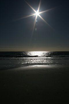 I wanna see the sun in the dark sur Toekie -Art