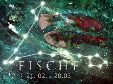 Tierkreiszeichen - Fische von Christine Nöhmeier