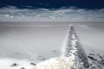 Wadden Meer, die Niederlande. von AGAMI Photo Agency