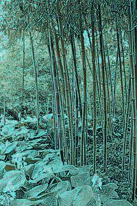 Bamboe met hosta's