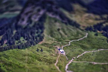 Miniaturbauernhof, Österreich von Hans van Oort