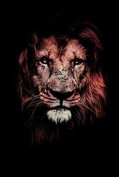 Portret van een leeuw - Donker - Nacht - Zwart - Leeuw - Leeuwen - Lion - Afrika - Roofdier - Wilde  van Hendrik Jonkman