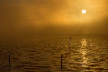Golden sunrise von Arjan van de Logt