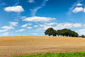 Glooiend heuvellandschap omgeving Valkenburg in Zuid-Limburg