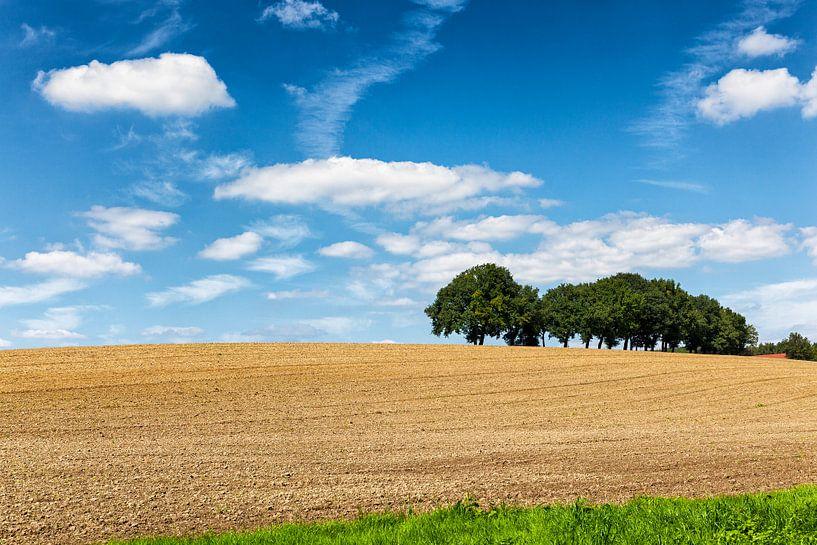 Glooiend heuvellandschap omgeving Valkenburg in Zuid-Limburg van Evert Jan Luchies