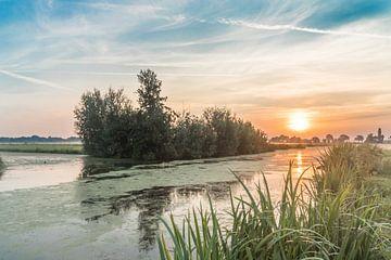 Sonnenaufgang im Polder von Rossum-Fotografie