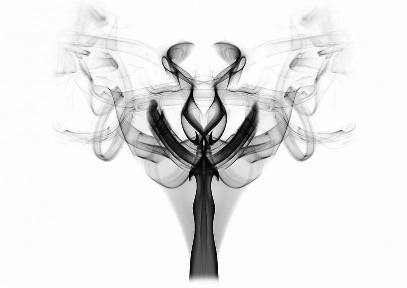 Smoke Art - Fenix van LYSVIK PHOTOS