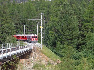 Romantische foto van bergtrein die uit het bos aan komt rijden van Patrick Verhoef