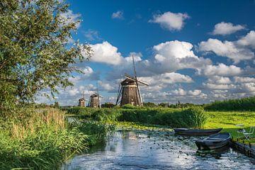 Das Grüne Herz in den Niederlanden von Remco Piet