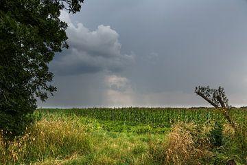 Gewitterwolken über Ostfriesland van Rolf Pötsch