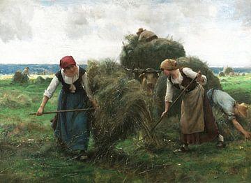 Julien Dupré~De Hay Harvesters