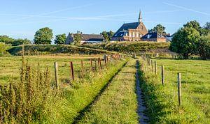 Smal pad door de uiterwaarden bij Herwijnen
