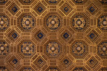 Plafond Palazzo Vecchio Florance van Axel Weidner