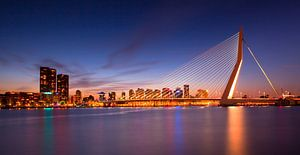 Rotterdam, skyline met Erasmusbrug bij zonsondergang, Nederland
