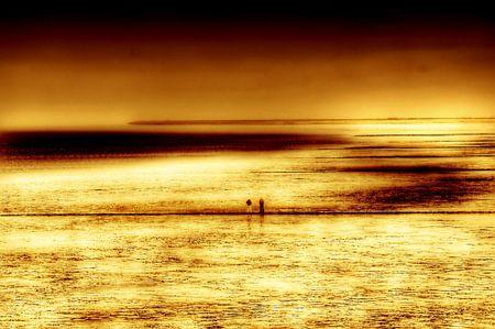gouden wad