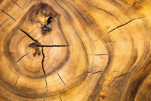 Oud hout van